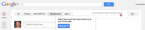 how to adjust google plus volume slider screen shot by Linda Sherman